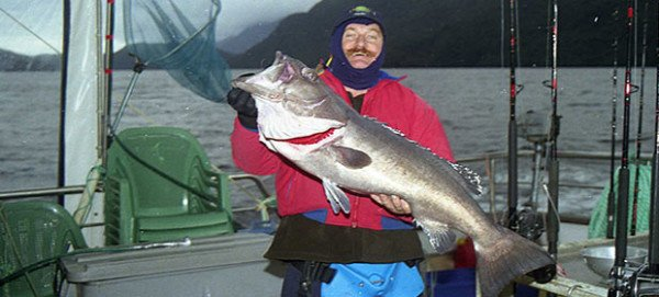Allan Burgess caught this groper in Fiordland, New Zealand.
