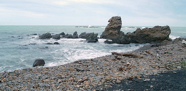 Typical rocky Kaikoura coastline near Half Moon Bay.