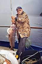 A Fiordland groper.