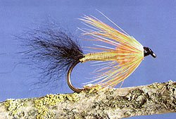 Alaskan Comet Salmon Fly. The Alaskan Comet is normally tied with a black fur tail and a gold tinsel body wound 2/3 of the shank, then an orange chenille throat, and finished with a blended yellow and orange hackle.