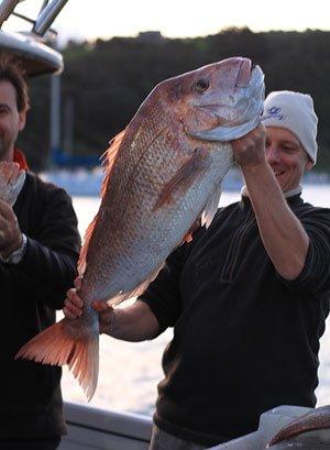 Snapper 9.6kg (21.12lbs).
