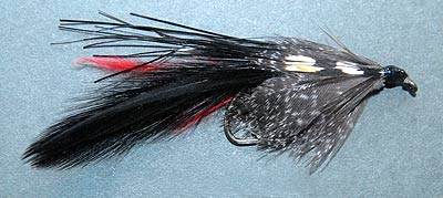 Chamberlain's Lure including strands of black Mylar. It does look a little like a bully. Once wet the lure has a more sleek appearance.