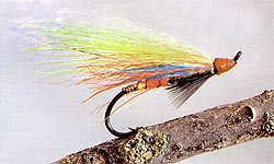 English Salmon Patterns. English patterns can be adapted for New Zealand conditions. Your flies don't have to be big lure patterns to take salmon.