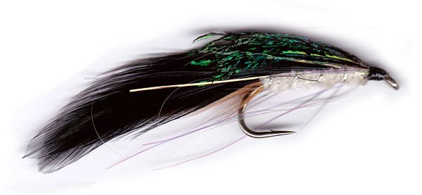 Hopes Dark Trout Fly