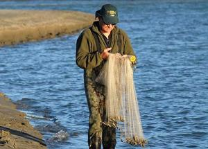 Casting nets for baitfish. It is important to make sure there are no tangles in the net before you fold it for casting.