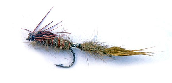 Wiggle Nymph Damsel tied in two sections to simulate movement.