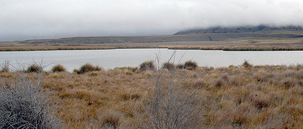 Another view across the same lake from further up the road towards Lake Heron. Taken on an overcast day the raupo along the distant shore hides a second lake behind it. You can get to the back lake down a rough 4x4 track. The Maori Lakes hold some big browns weighing between 2.5 and 3 kgs.