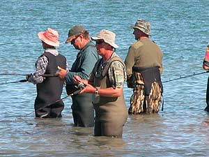 Salmon anglers gather at the confluence of the Kaiapoi and Waimakariri rivers. A popular spot this season.