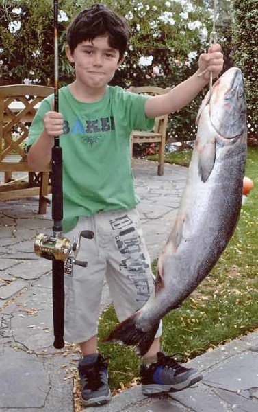 Young Ben Reinke caught his monster 25 pound salmon from the Waitaki River while fishing with his Poppie Keith Reinke.