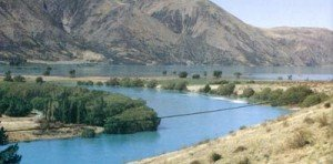 Lake Waitaki was vrey high that summer. Note the trees under water.