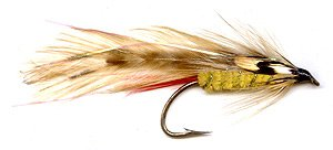 The lure becomes the Parsons' Glory Imperial with the addition of jungle cock cheek feathers.