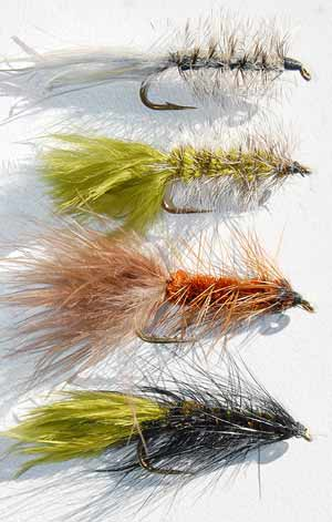 Woolly Buggars: (from top): Grey, Oliver, Brown, Olive and Black. Once the marabou tail becomes wet it takes on a sinuous pulsing action trough the water.