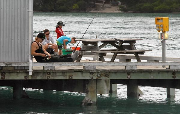 Fishing from wharf at Mapua.