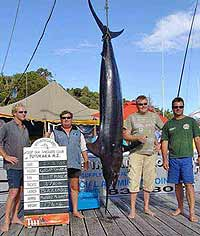 New Zealand has a world famous big game fishery in the upper North Island.