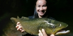 Lake Rotorua brown trout, February 2020.