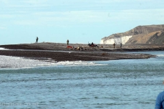 In this photograph big sweeper waves can be seen coming over the shingle spit on the south side of the Hurunui River mouth during the top of the tide. Salmon anglers wisely wear life-jackets and keep a constant eye on the sea when fishing these more dangerous spots.