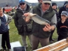 Lake Coleridge, Ryton Bay, weigh-in, 2011