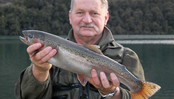 A typical Lake Selfe rainbow trout.