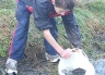 Young boys, water, and fish go together! Salmon release at Montrose Hatchery.