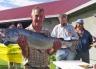 A big Otago Harbour salmon.
