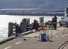 Otago Harbour drop-net for salmon
