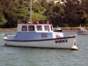 Launch Otago Harbour
