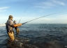 Neil Bond into a kahawai at the Waimakariri River mouth. It is just too much fun! Waimakariri River Trout and Salmon Fishing - fishingmag.co.nz