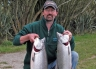 Two salmon from Macintoshes Rocks. One after the other. These are fat fresh sea-run salmon too. Sometimes you struggle to catch a salmon. At other times you can catch them in pairs! Waimakariri River Trout and Salmon Fishing - fishingmag.co.nz