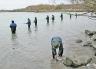 Anglers fishing at the confluence of the Kaiapoi and Waimakariri Rivers.