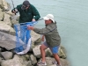 Safely in the net at Macintoshes Rocks. Waimakariri River Trout and Salmon Fishing - fishingmag.co.nz