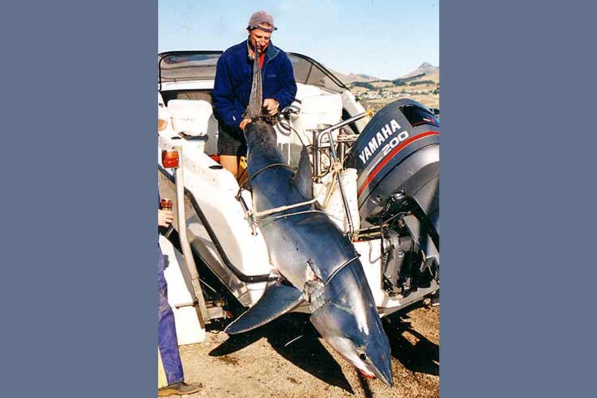 Grant Collins pictured with his 153kg mako shark caught off Banks Peninsula, on the Canterbury Coast.
