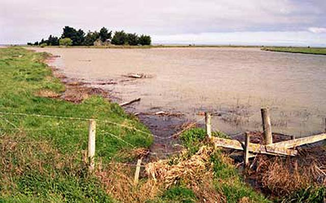 The mouth of the Selwyn where it enters Lake Ellesmere.