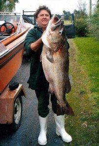 Lloyd from Kaikoura Fishing Centre caught this 57 lb groper off Kaikoura.