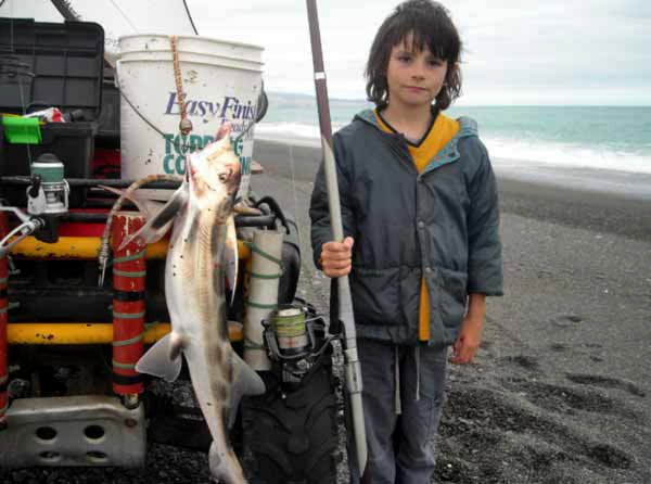 Ian's son Marlin Robertson, 7 years old, with his first elephant fish caught at Birdlings Flat/Bayleys Beach on 11 January 2011 at 5.30 pm on cooked prawn bait.