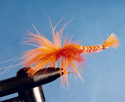The shrimp fly is a good one for many saltwater species.