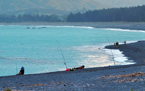 Surfcasters at South Bay, Kaikoura. Kaikoura Coast Fishing part 2