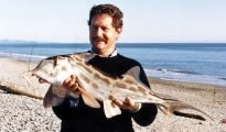 Elephant fish caught surfcasting by Allan Burgess at Haast, Westland, New Zealand
