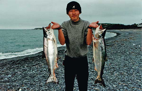 A brace of salmon caught off the beach next to the railway station, Kaikoura.