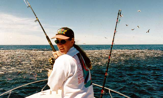 Vast school of mackerel photographed off Kaikoura.