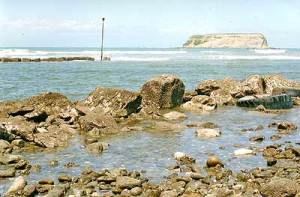Motunau Island view
