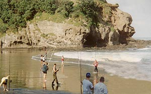 Bethells and O'Neils Beaches Surfcasting Contest.