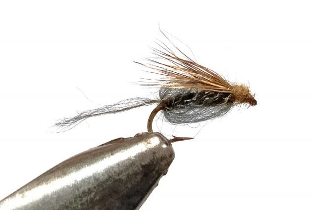 Caddis Pupa tied with Antron to give off air bubbles and sparkle.