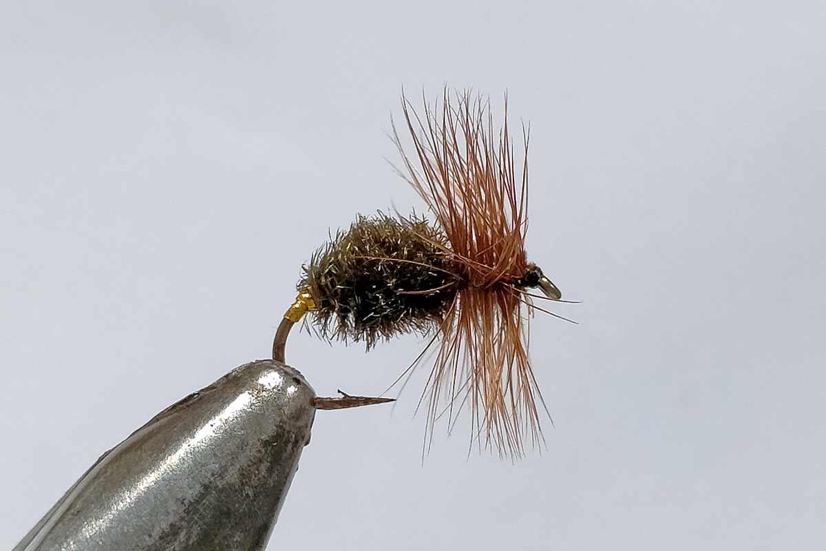Coch-y-bondhu trout fly.