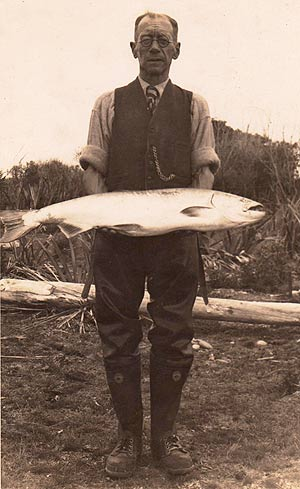 Rangitata River. This 20 lb quinnat, or chinook, salmon was caught on the 20th Jan 1951. That is just 46 years after salmon were successfully introduced in to New Zealand. The first successful introductions were made into the Waitaki River.