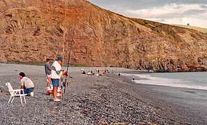 Birdlings Corner is a popular surfcasting spot. It is also favoured by people looking for coloured stones.