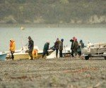The ritual of Opening Weekend at Lake Coleridge. You can just see anglers fishing from the distant shoreline.