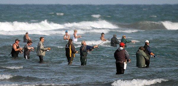 Anglers spin fishing for kahawai at the Waimakariri River mouth.