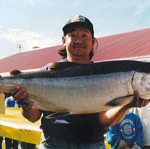 Otago harbour salmon Fishing Contest Winning Fish.