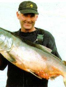 waitaki River salmon