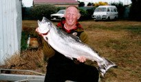Waitaki River big salmon featured image.